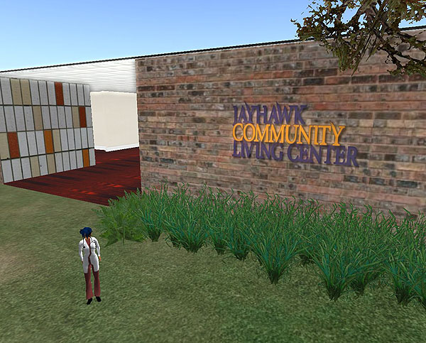 Virtual World Learning Spaces: Developing a Second Life