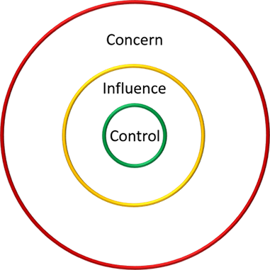Figure 6. Circle of concern with influence and control